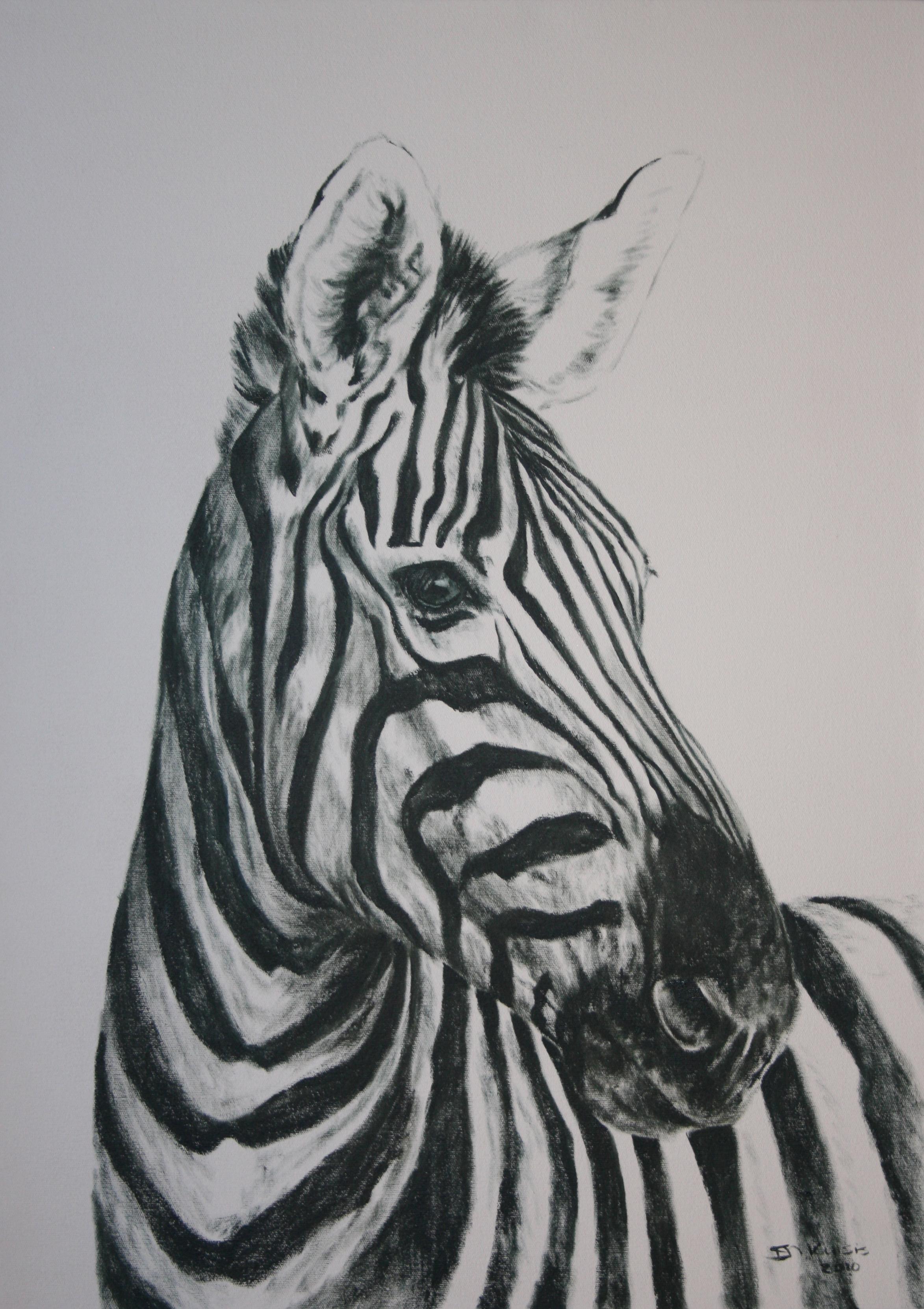 Zebra Paintings PORTRAIT 1 PARREIRA