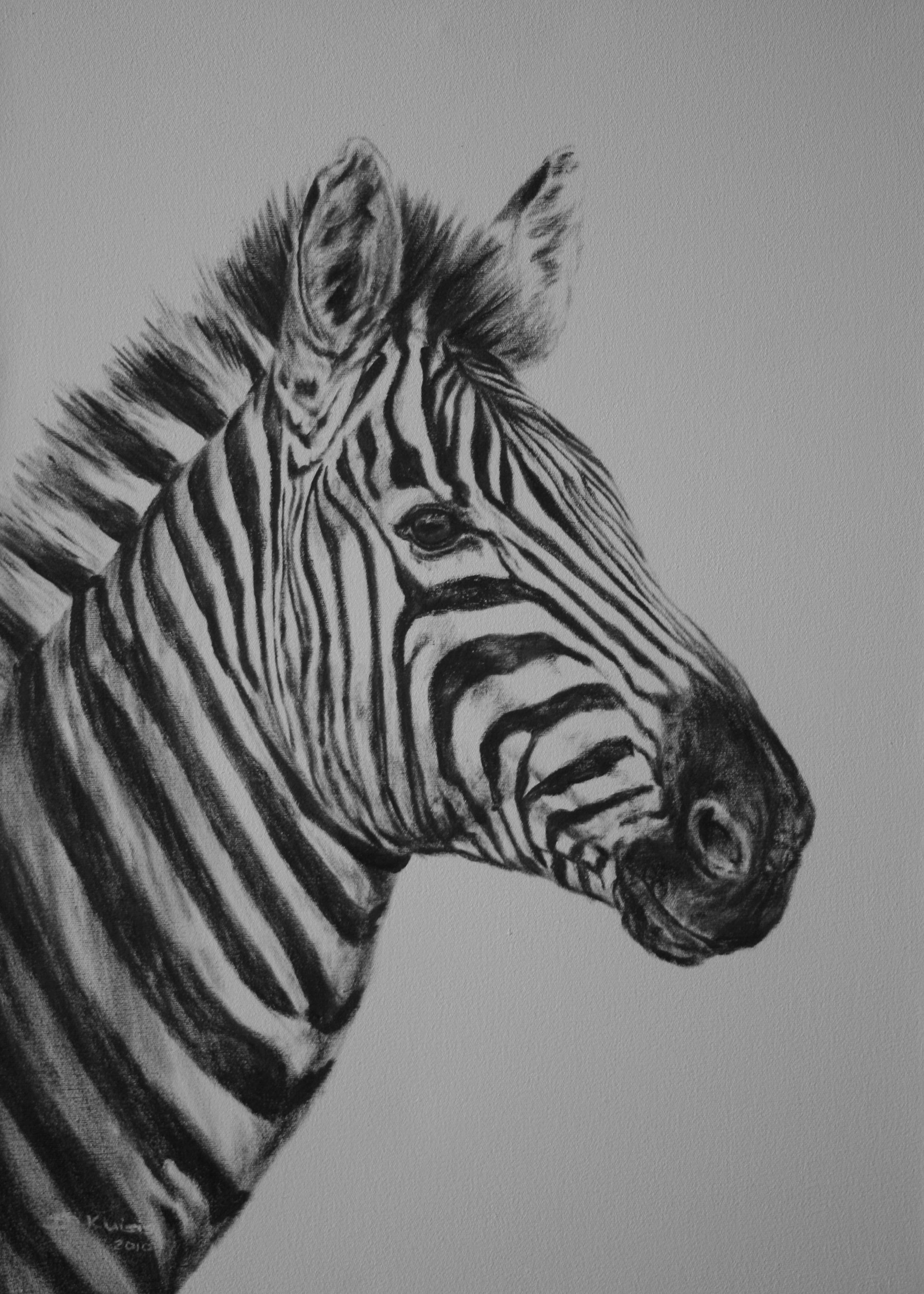 Zebra Paintings PORTRAIT 2