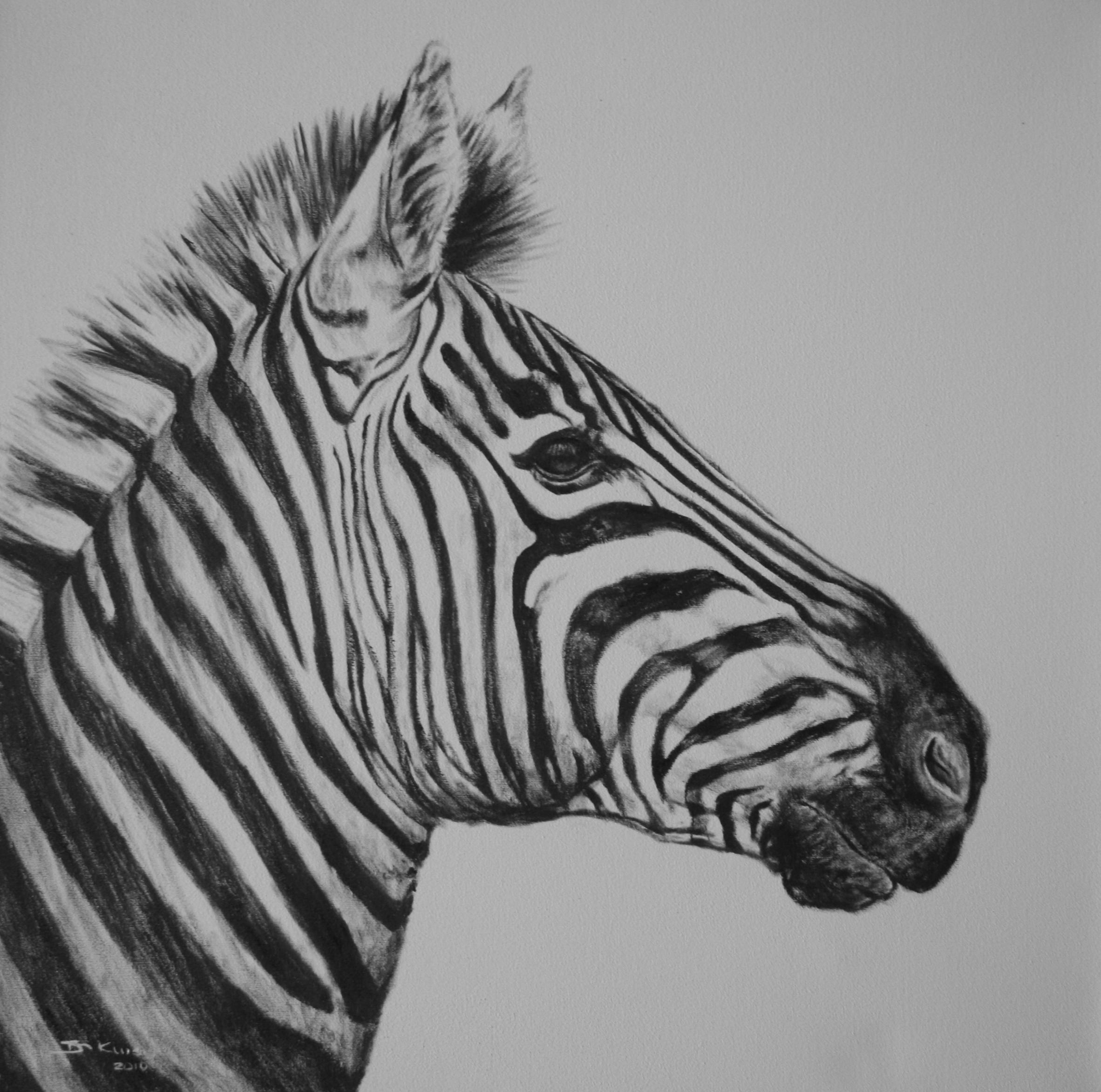 Zebra Paintings WATCHFULL