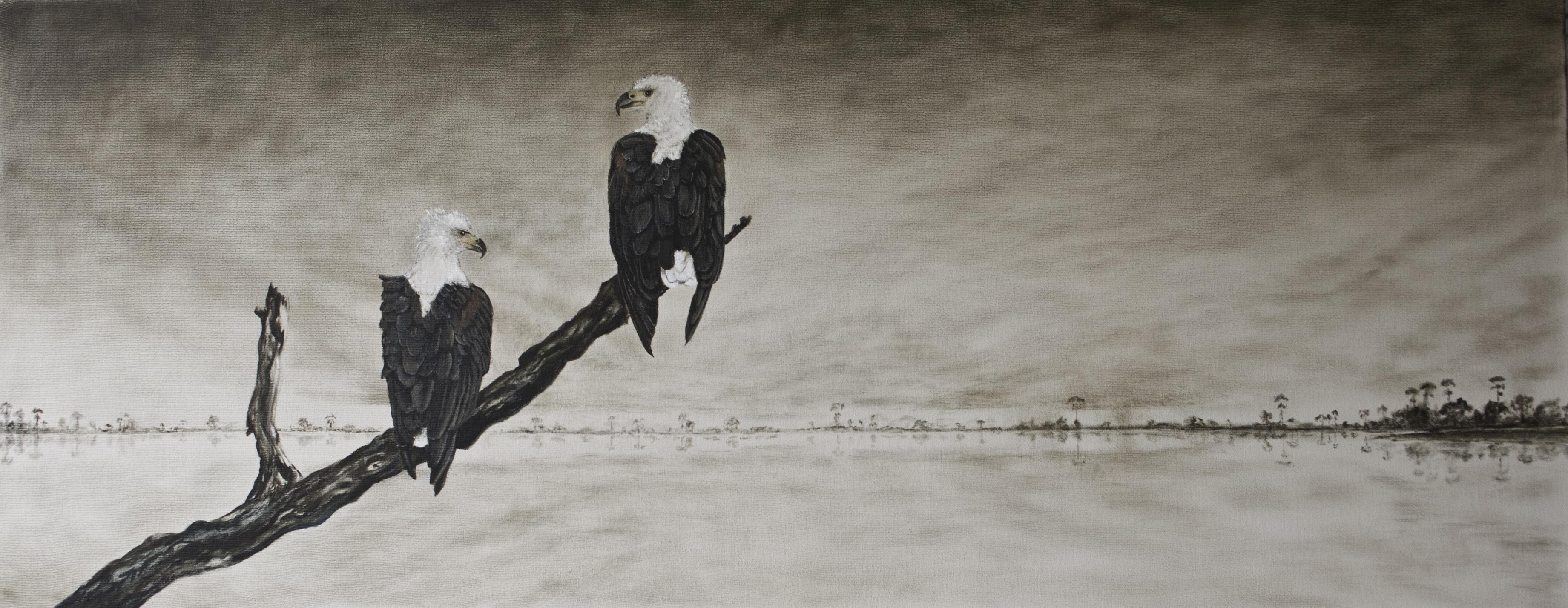 fish eagles_MG_5132