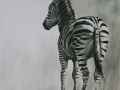 ZEBRA SKETCH 4 SET
