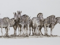 Herd of Zebra - Oils on Canvas 1340 x 700mm _MG_1783