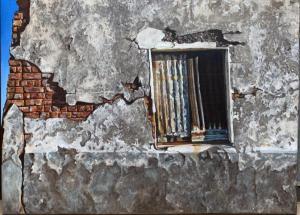 Entropy of a Griesenkraal Window 2 R8800 550 x 762
