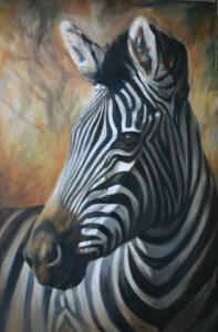 Zebra_Gaze